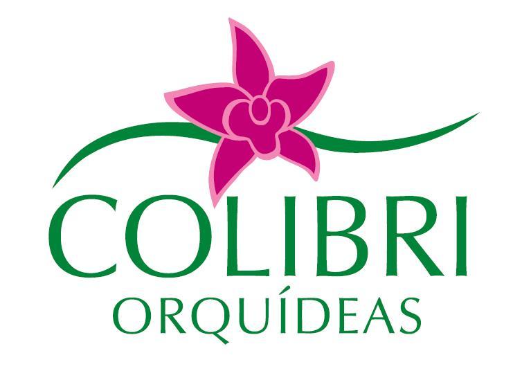 Colibri Orquídeas